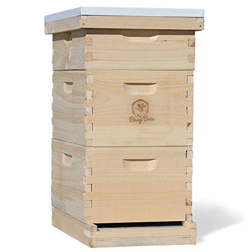 Busy Bee's -n- More Complete 8 Frame Langstroth Bee Hive includes Frames & Foundations LBH08-2D1M